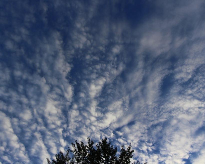 Sky 2.jpg
